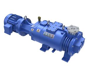 Trillium TDS300Xi Dry Pump